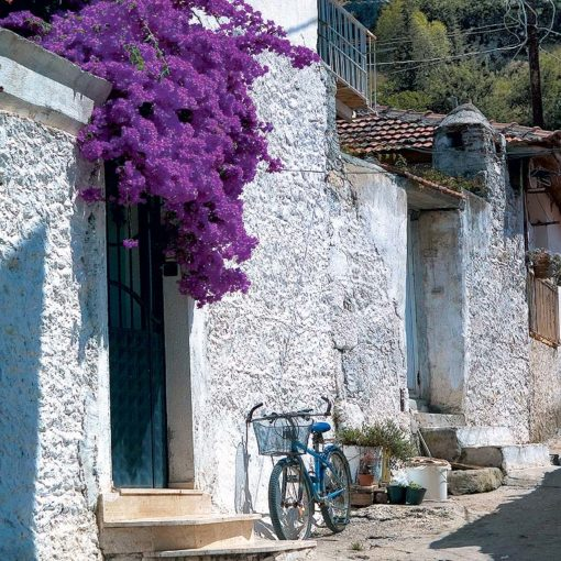 View of white houses and purple flowers in a village between Kaș and Dalyan, Turkey