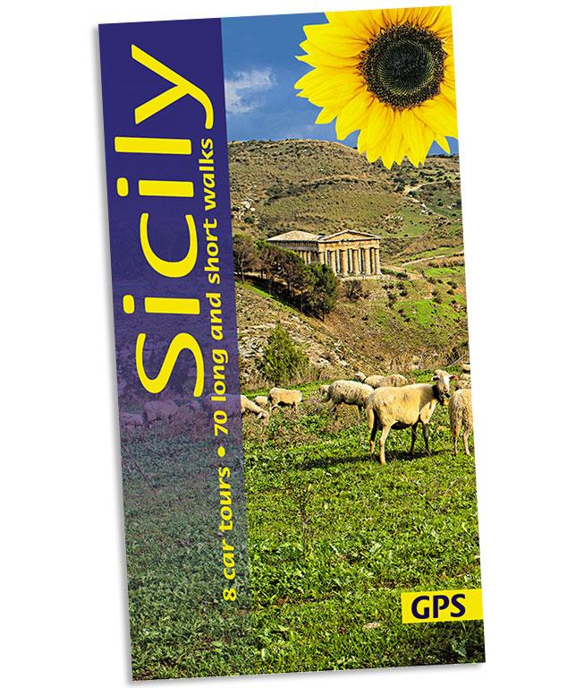 Sunflower Landscapes Sicily