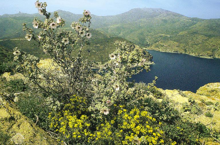 Easten Pyrenees wild coast